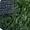 Искусственная трава Беларусь