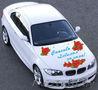 Наклейки на автомобиль на выписку из Роддома в Сморгони - Изображение #3, Объявление #1170755