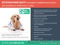 Ветеринарная помощь для ваших любимых питомцев.