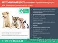 Услуги ветеринарного центра.